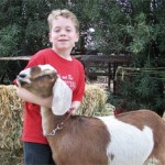 Small Animals And Other 4-H Fun In Store At The Fair