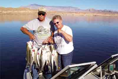 Fishing the overton arm for Fishing lake mead