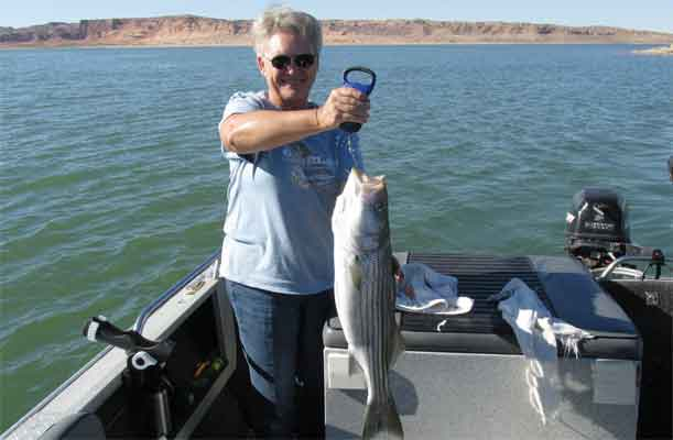 Fishing the overton arm november 13 2013 for Fishing lake mead