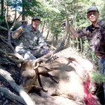 Muzzle Load Hunt Approaches The Elk 'In Their World'
