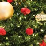 Festival of Trees To Bring In Holiday Season