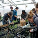 MVHS Ag Students Help At Warm Springs