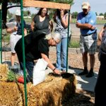 Learning The Benefits Of Gardening In Straw Bales
